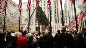 Rockefeller Center Christmas Tree Is Hoisted Into Place For The Holiday Season
